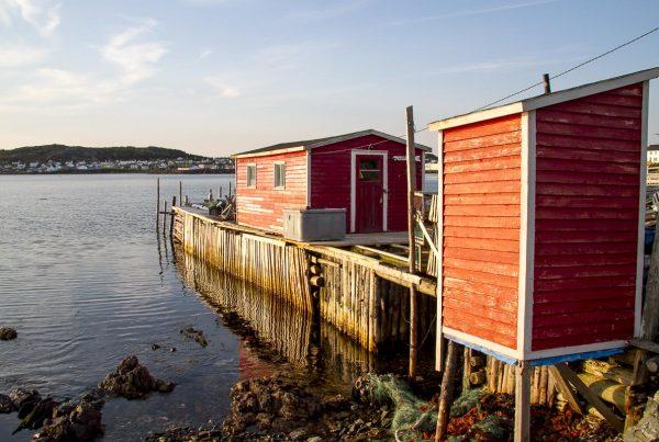 Newfoundland - Twillingate - June 23, 2010