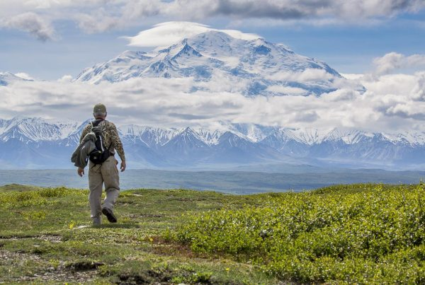 Alaska - Denali National Park, Hiker With Mount Denali - June 18, 2016