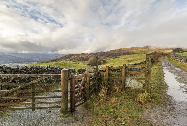 Lake District - Wansfell Pike Walk - January 19, 2014