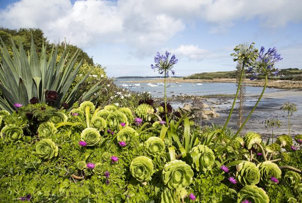 Isles Of Scilly - St. Mary's - September 12, 2015